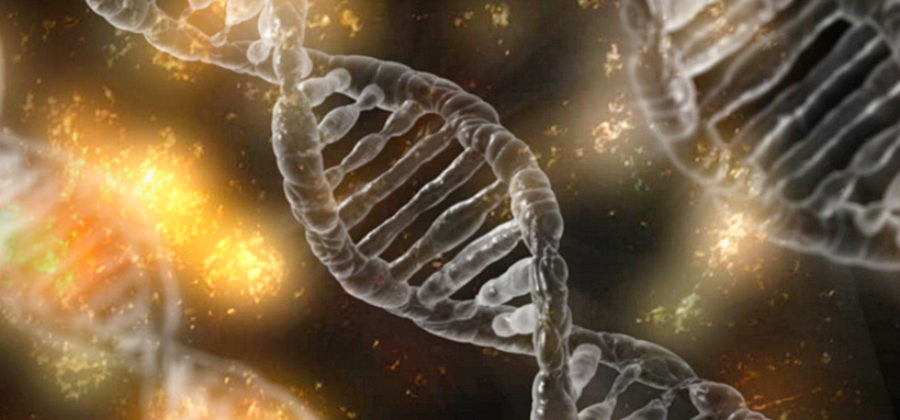 Что такое ДНК? Наследственность плохая и хорошая, зачем делать тест, что он может нам показать