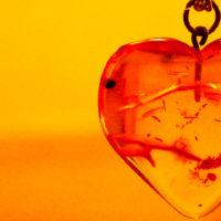 Зачем нам янтарная кислота? Где содержится и какие полезные свойства для нашего организма