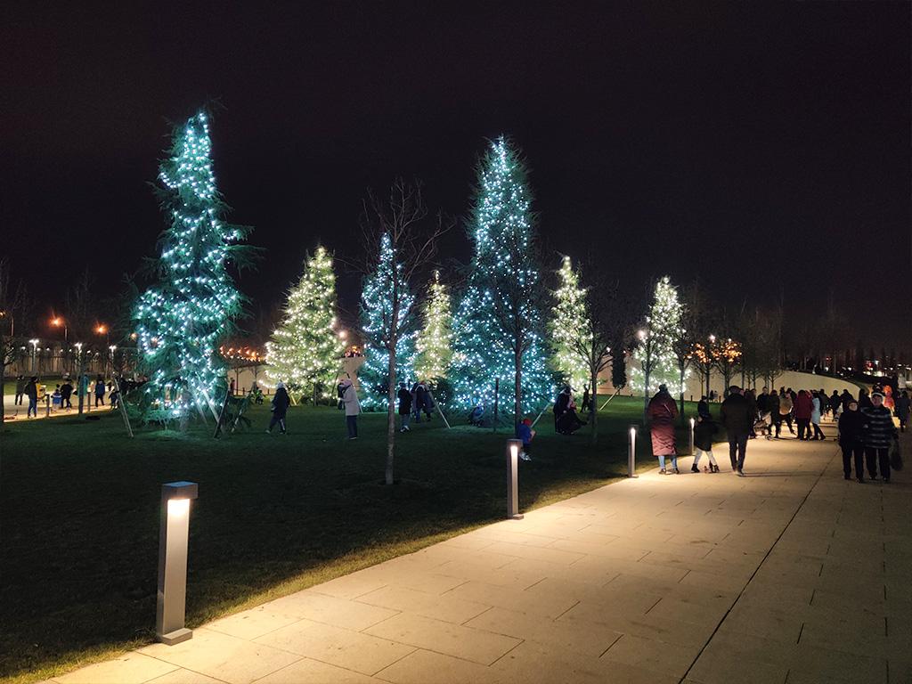 алея зимой в городском парке краснодар