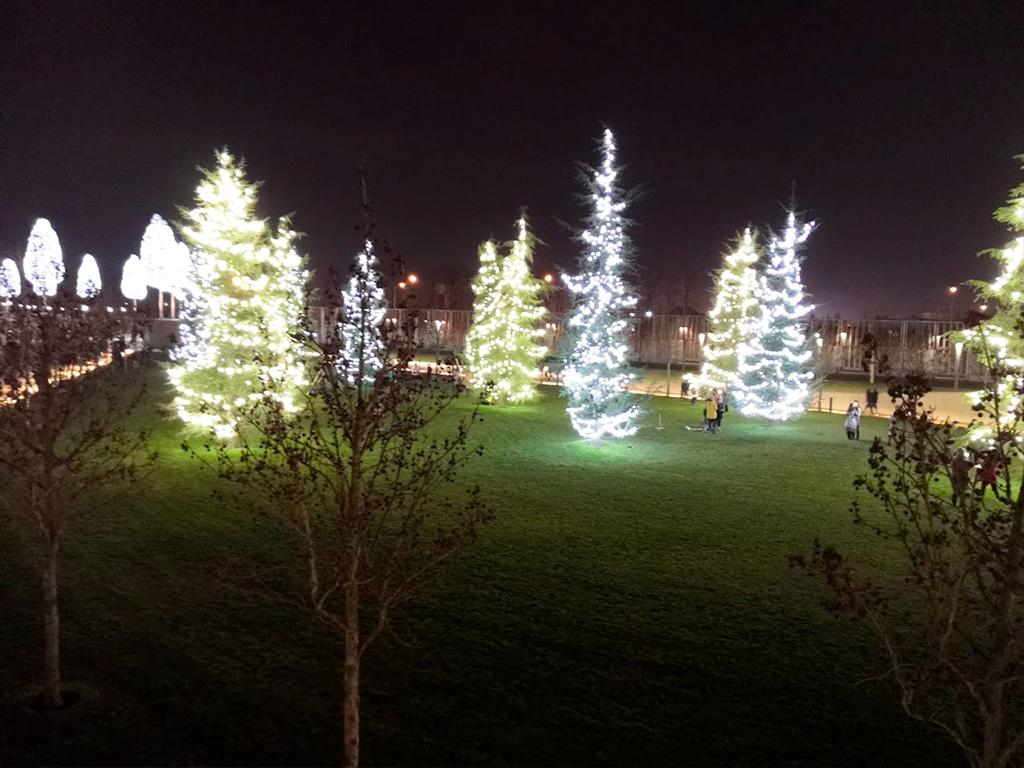 городской парк краснодар зимой фото
