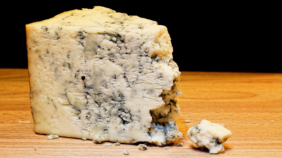 сыр рокфор cheese roquefort