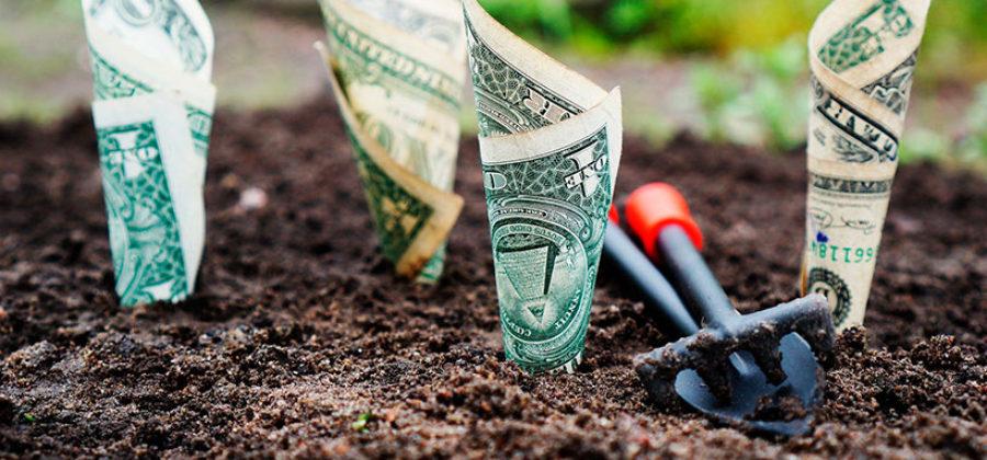 Как сделать первые шаги в инвестировании. Инструкция начинающему инвестору