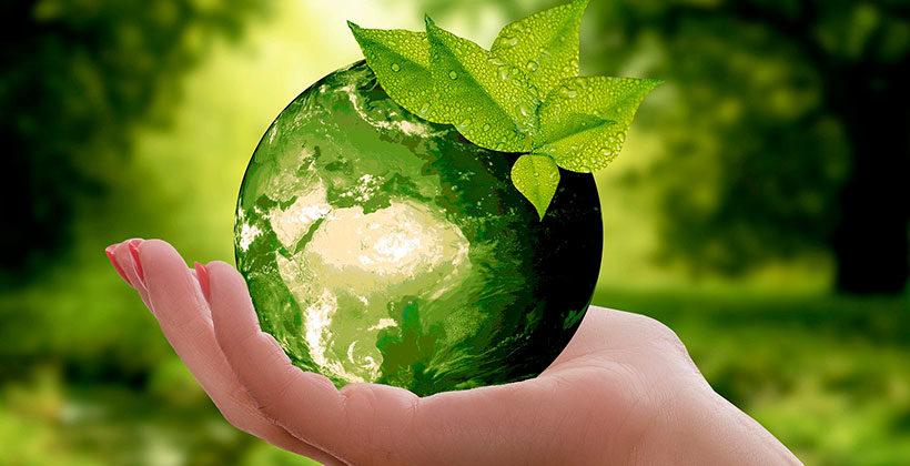 Здоровье без химии или почему стоит обратить внимание на Greenway