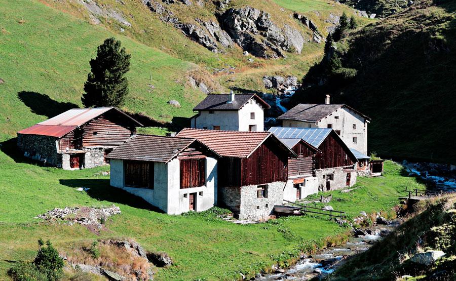 деревня, жизнь на природе