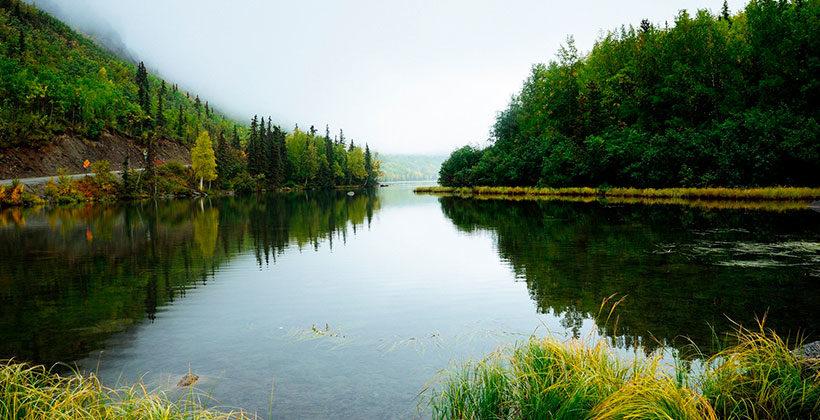 Экология и здоровье человека: влияние научно-технического прогресса на нашу жизнь
