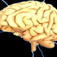 Нейронные связи головного мозга: почему умирают нервные клетки и как создавать новые связи