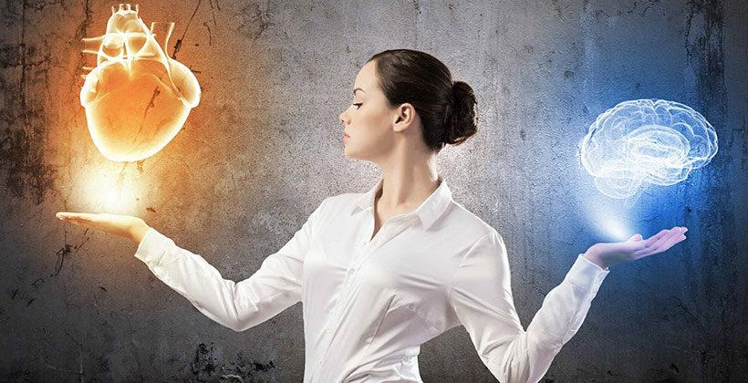 Эмоциональный интеллект: 4 основные составляющие, способы развития, модель способностей