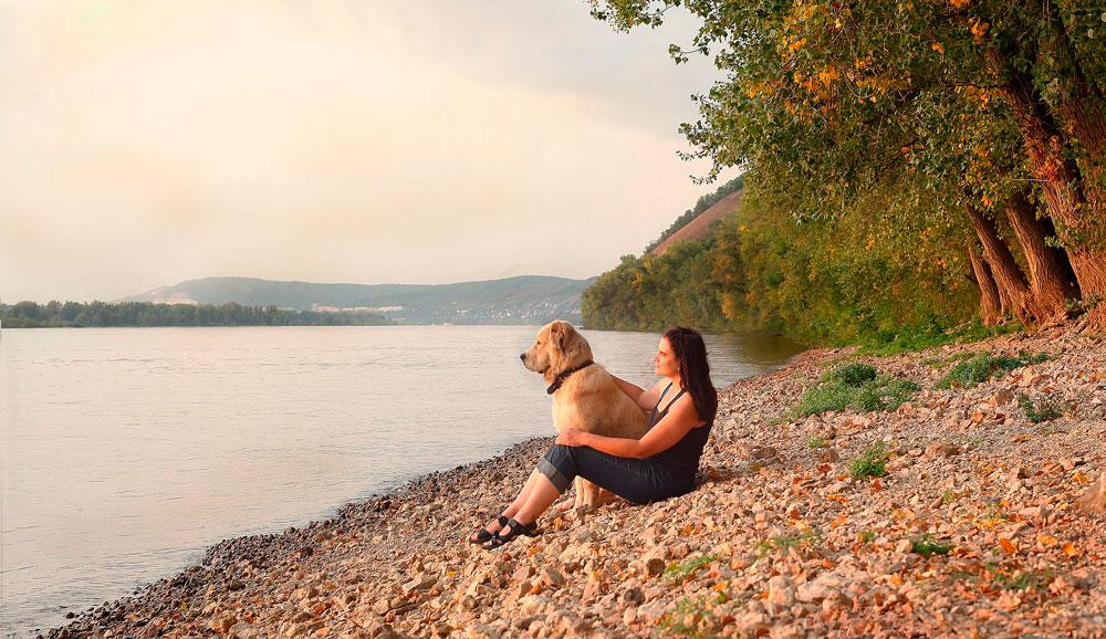 уединение, девушка и собака на берегу реки