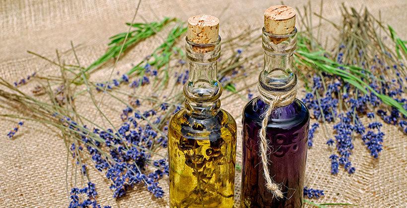 Ароматерапия и механизм воздействия эфирных масел. Влияние запаха на наш организм